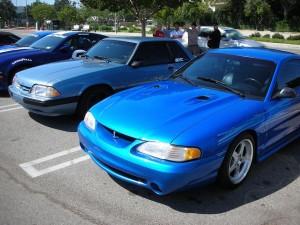 Mustangs / Lightnings
